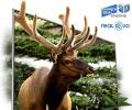 Телевизор 3D Samsung UE-55D7000