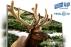 Телевизор 3D Samsung UE-46D7000