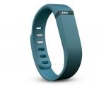 Браслет Fitbit Flex Slate