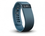 Fitbit Charge L Slate