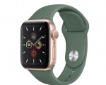 Apple Watch Series 5 GPS 40mm Gold Aluminum Case with Pine G...