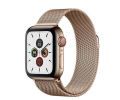 Apple Watch Series 5 GPS + LTE 40mm Gold Stainless...